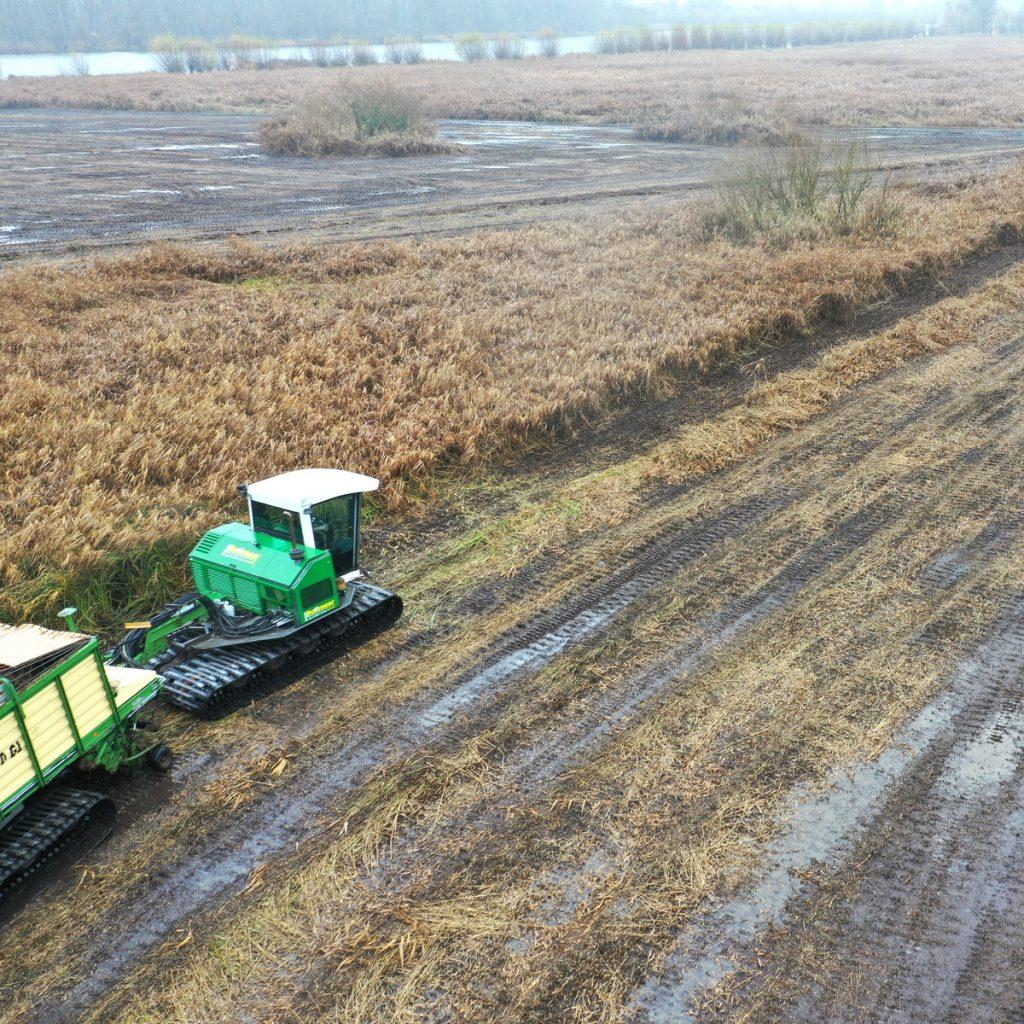 Wetland maaien Biesbosch